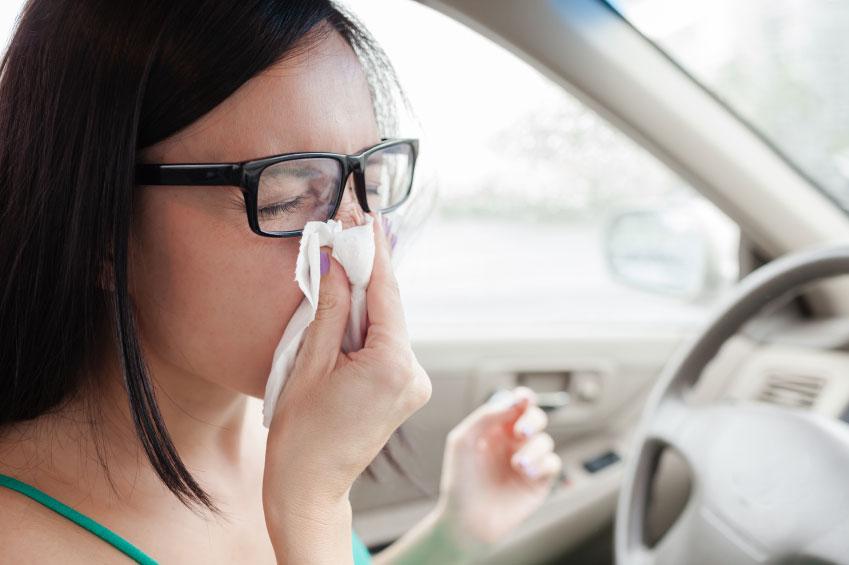 Recomendaciones para conductores con alergia